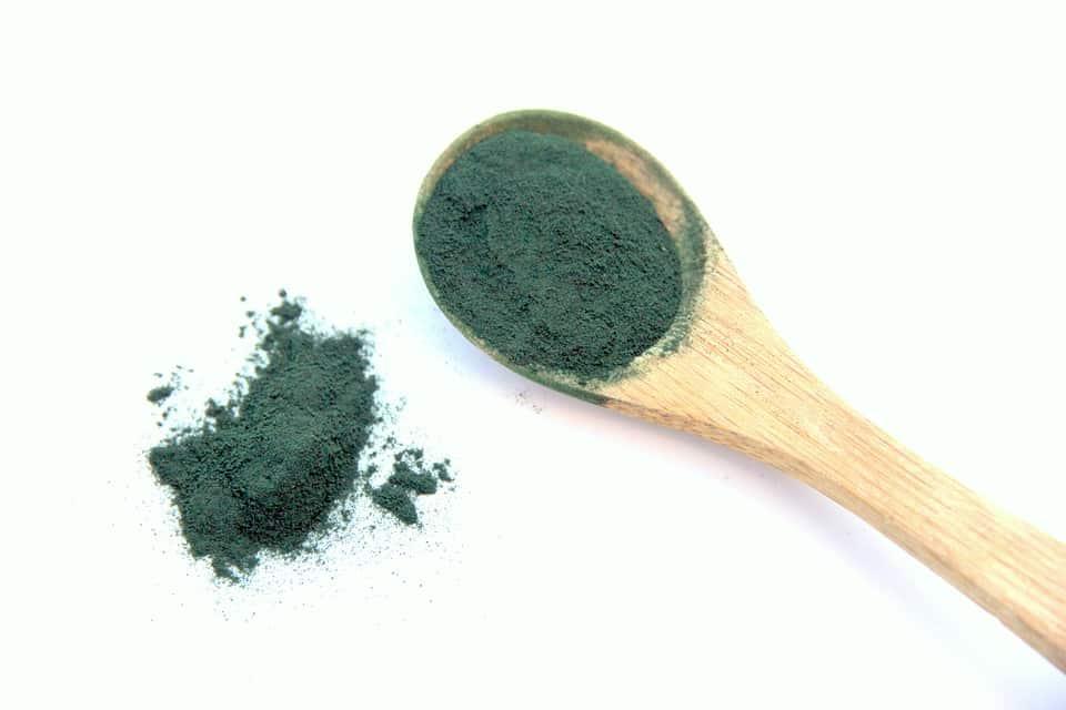 Chlorella por magas klorofiltartalommal