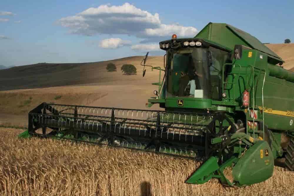 Történhet bérmunkában az aratás